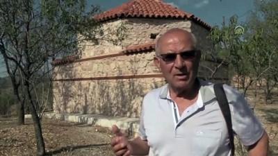 hayat agaci - Osmanlı uç beyinin türbesinde eski Orta Asya Türk motifleri çıktı - BİLECİK