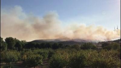 makilik alan - İzmir'de makilik alanda yangın