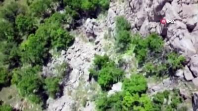 Hakkari'de PKK'ya yönelik operasyon; 14 gözaltı