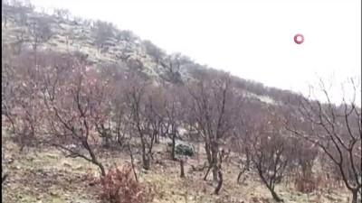 """Mardin'de """"KAPAN-1 BAGOK"""" Operasyonu başladı"""