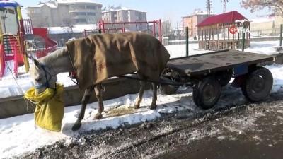 Ağrı'da soğuk hava vatandaşın kirpiklerini bile dondurdu