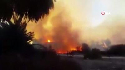 itfaiye araci -  - Libya'da 10 bin palmiye ağacı kül oldu
