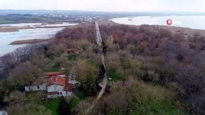 amator -  Bursa'daki su kuşlarının sayımı yapıldı