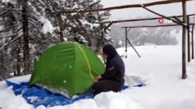 Ağaçlar zarar görmesin diye üzerine yağan karı temizleyip doğaya sahip çıkıyor İzle
