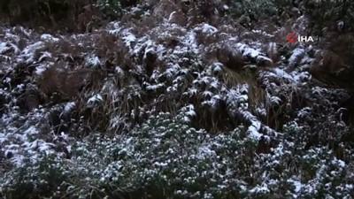 İstanbul'da kar yağdı, Aydos Ormanı beyaz örtüyle kaplandı İzle