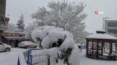 Kar Gercüş'ü beyaza bürüdü