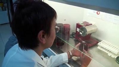 Duygu Perçin Renders: 'Şuan için Corona virüsü tehlikesi bulunmuyor'