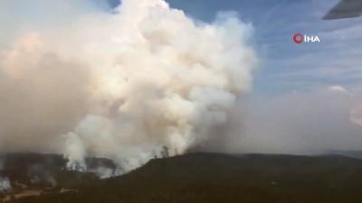 - Avustralya'nın başkenti Canberra'da acil durum - Şiddetli rüzgarlar yangınları tetikliyor