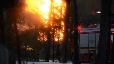 tahkikat -  Ordu'daki doğalgaz patlaması sonucu 2 evde hasar meydana geldi