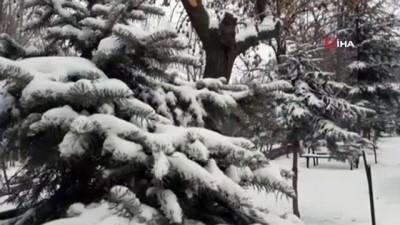 Kurtların şehir merkezine kadar indiği Kars'ta soğuk ve kar yağışı etkili oluyor