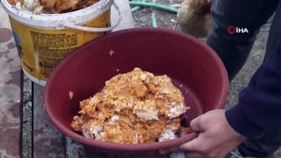 Atıklarla beslenen tavukların yumurtaları her sabah öğrencilere kahvaltı oluyor