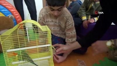 Özel öğrenciler muhabbet kuşu ile rehabilite edilecek