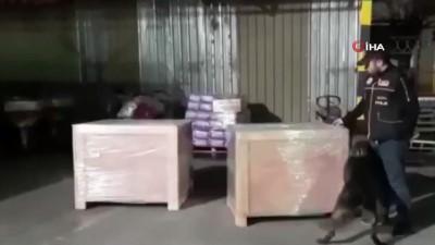 Kargo aktarım merkezinde 11 bin paket kaçak sigara ele geçirildi