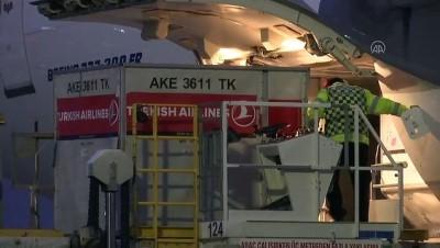 uluslararasi - (TEKRAR) Yurt dışına kaçırılan iki kültür varlığı Türkiye'ye getirildi - İSTANBUL