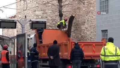 gesi -  Gülhane'de ağaç devrilmesi nedeniyle tramvay seferleri aksadı