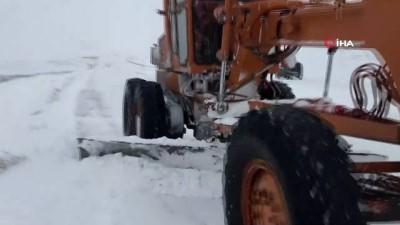 Ardahan'da kar, tipi ve fırtına