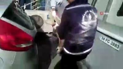 Su kuyusuna düşen köpeği kurtarma operasyonu kamerada İzle
