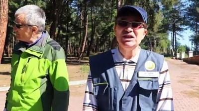 ormana - 'Terminatör böcekler' biyolojik mücadele için doğada - TEKİRDAĞ