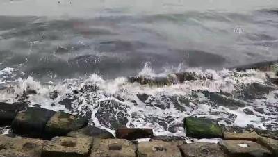 Marmara Denizi'nde poyraz etkisini sürdürüyor - TEKİRDAĞ