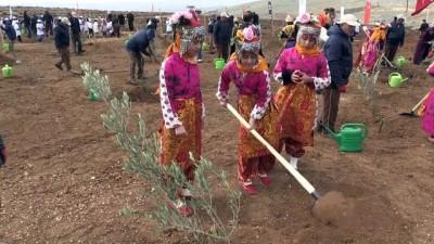 ozel sektor - Gaziantep'in orman varlığı artıyor