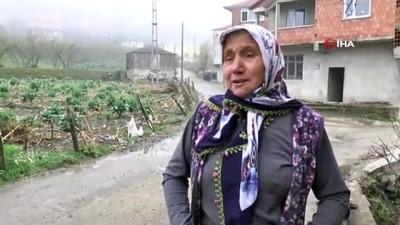 isaf -  Giresun'da köylüleri endişelendiren göç dalgası