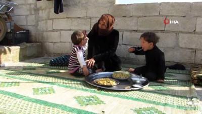 idlib -  - Eşi Lübnan'da hapishanede bulunan Suriyeli kadının kampta yaşam mücadelesi