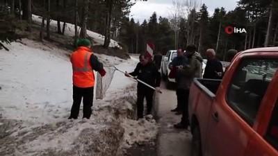ormana -  Uludağ'da otomobilin çarptığı yaralı tilkiyi böyle kurtardılar