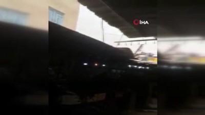 Irak'ta çekirge sürüleri ekinlere saldırdı