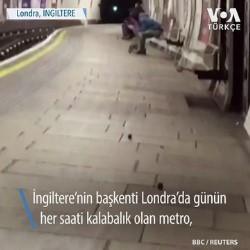 Metro Fareleri Kavgaya Tutuştu