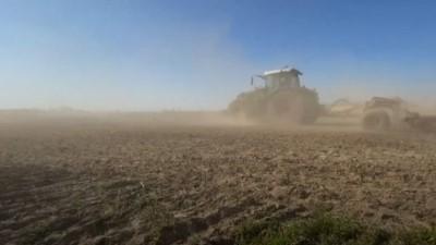 Alman çiftçiler sadece korona ile değil kuraklıkla da mücadele ediyor