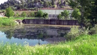 Beyşehir Gölü kenarındaki atıl sulama pompa istasyonunda toplu balık ölümü - KONYA