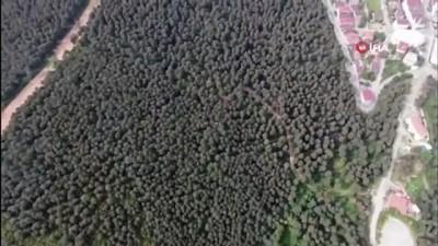 Ormanda piknik yapan 2 kişi drone ile tespit edildi