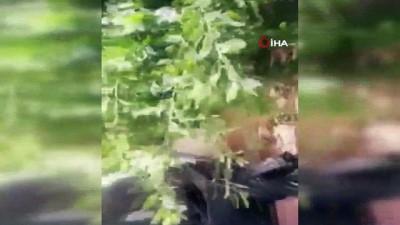 - Hafter milislerinden mayınlı saldırı: 2 ölü