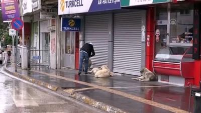 Doğu Anadolu'da Ramazan Bayramı'nın ilk günü sokaklar boş kaldı - TUNCELİ