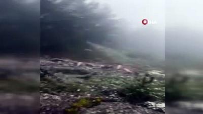 saganak yagis -  Artvin'e Mayıs ayında kar yağdı, hayvancılıkla uğraşanlar zor anlar yaşadı