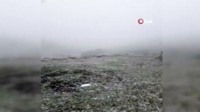 kar yagisi -  Kar altında kalan çobandan evde kal mesajı
