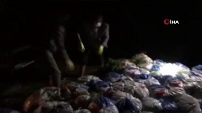 para cezasi -  Van Gölü'nde kaçak avlanan 16 ton ölü inci kefali ele geçirildi