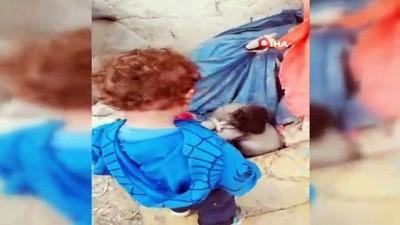 1 buçuk yaşındaki çocuk ile yavru köpeğin dostluğu yürekleri ısıttı
