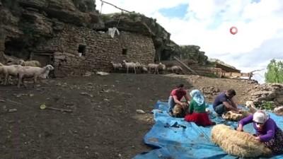 Mağarada organik hayvancılık