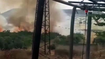 - Suriye'de Esad rejimi yüzlerce ağacı ateşe verdi