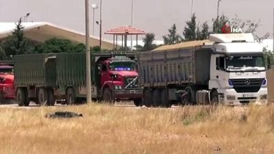 Suriye'den Türkiye'ye hububat ithal ediliyor