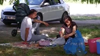 Piknikçilere KKKA vakalarına karşı 'çimlere uzanmayın' uyarısı - AFYONKARAHİSAR