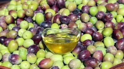 Zeytinyağı üreticisi gelin kaynana hedef büyüttü - KAHRAMANMARAŞ