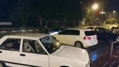 yagan -  Yağmur ve dolu yağışı etkili oldu