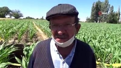 Karaman'da yeni obruk oluştu, köylüler tedirgin
