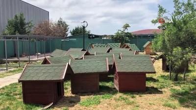 siddetli yagis -  Hayvan barınağındaki kulübe ve kafesler böyle uçtu