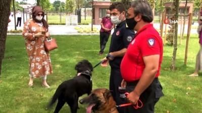 İtfaiye ekiplerinin sahiplenerek eğittiği arama kurtarma köpekleri programda boy gösterdi