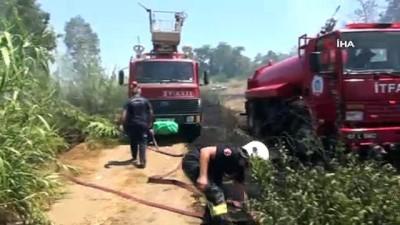 ilk mudahale -  Manavgat'ta orman yangını