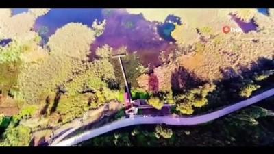 ekolojik -  Efteni gölü misafirlerini bekliyor