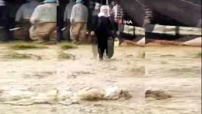 Yaylada aşırı yağmur nedeniyle mahsur kalan berivanlar 5 saat sonra kurtarıldı